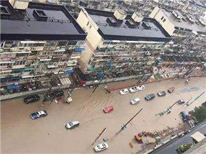 """上海连夜暴雨积水严重开启""""看海模式"""""""