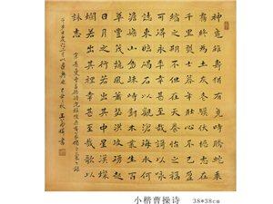 王若桦作品