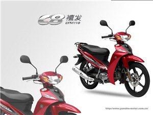 雅马哈C8摩托车
