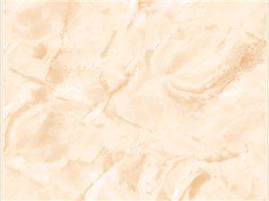 金舵陶瓷I晶控(微晶石)系列2-JDW8811