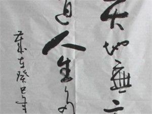 吴远光书法