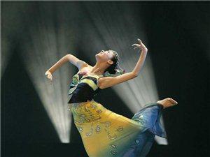 成人民族舞培训