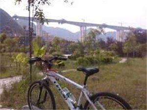 铜仁市低价出售9成新白色山地车