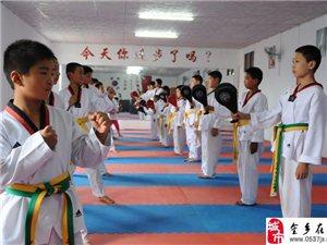 跆拳道暑假班開始招生了