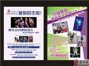 栾川贝瑞舞蹈暑假开始报名了