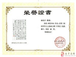 樂平市正心寫字培訓寒暑假節假日招生