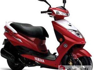 本市长期供应九成新原装电动车,品牌摩托车当面交易