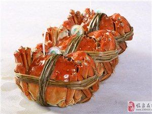 陽澄湖蟹 深層解構