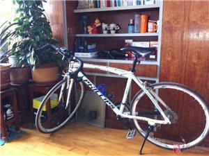 飞利浦公路自行车 后经自己改装 适合新人入手