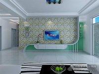室内装修(液体壁纸,硅藻泥电视背景墙)