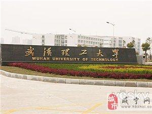 武漢理工大學2013年自考四年制本科招生進行中