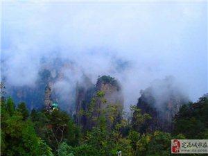 森林公园,金鞭溪,袁家界,杨家界,天子山三天两晚游