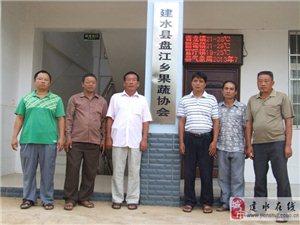 建水盘江乡果蔬协会网站开通