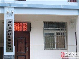 建水县盘江乡果蔬协会网上营业厅开通