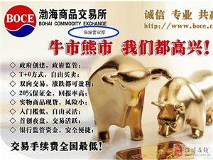 中国最大的现货商品交易所——渤海商品交易所火热招商
