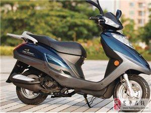 出售一批八?#36742;?#25104;新以上二手摩托车涵盖各种?#25918;?#21644;型号