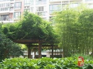 出售) 丁桥——【丁兰广场】对面,颐景苑,足不出户就找到好房