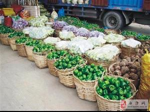 深圳有機蔬菜配送公司哪家比較可靠?