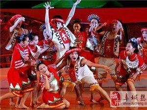 专业舞蹈培训民族舞