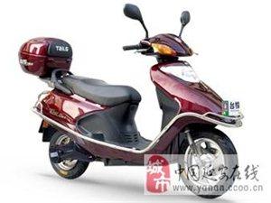 低价菲律宾葡京开户多款电动车,质量好速度快