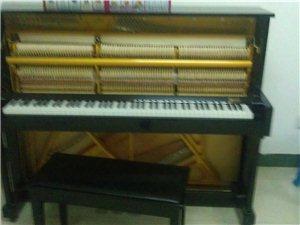 钢琴、电子琴培训