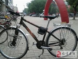 帝柏3500一辆自行车,捷安特的