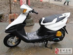 亳州二手电动车交易市场长期优价出售八九成新的电动车