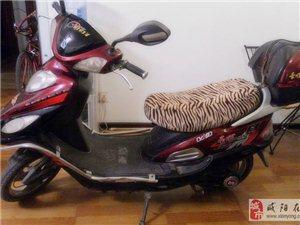 出售豪顺踏板电动车