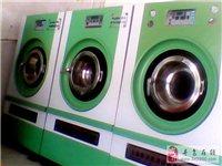 低价转让泰洁干洗设备一套