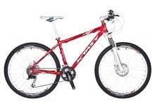 新特狮运动休闲自行车