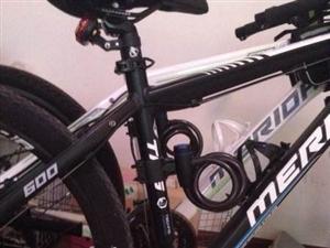 出手美利达公爵系列两辆自行车