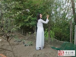 美丽善良越南姑娘寻找中国男士走进婚姻殿堂