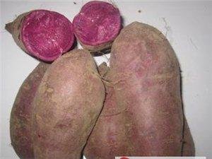 三里農家自種綠色紫薯紅心薯2000市斤批發