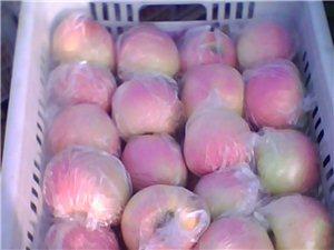 陜西膜袋紅富士蘋果價格/庫存香梨價格/紅提葡萄價格