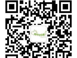 奶茶买一送一,阿牛与仙草新店开业火热促销
