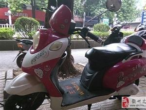 卖粉红/白龟款电动车