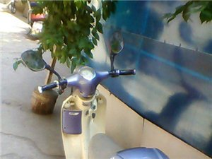 诚心急转经济适用代步电瓶车一辆。真的很实惠,看看吧