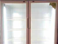 出售九成新立式展示冰柜一台