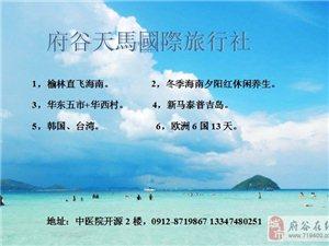 天马国际旅行社-为您服务