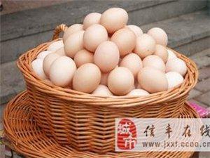 正宗農村土雞蛋,信豐城48小時內送貨上門