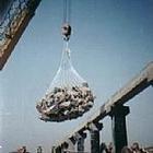 铅丝石笼生产厂家