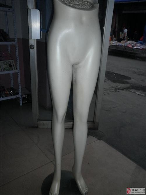 9成新女褲模低價處理,預購從速,可看貨!