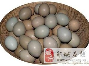 邹城市山鸡蛋家庭配送