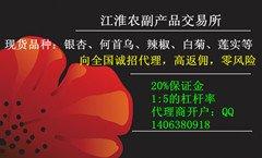 江淮农产品交易中心诚招代理,散户开户做盘子