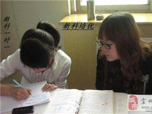 河池金城江清华小学初中辅导先免费学习满意再学