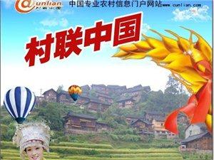 村联网面向黔东南招商