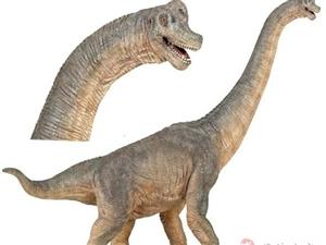 法国正品PAPO霸王龙恐龙模型safari模型