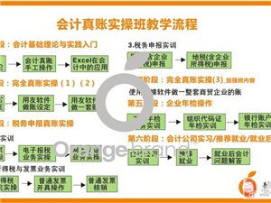 惠州提供实习使用自编教材教学会计真账实操培训!
