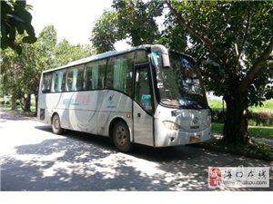 金龙客车 (41座 苏州金龙 旅游大巴车)