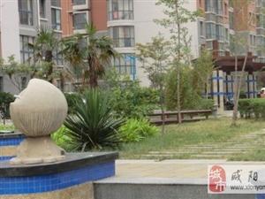 西咸新区世纪大道陈阳寨转盘经典两居现房出售